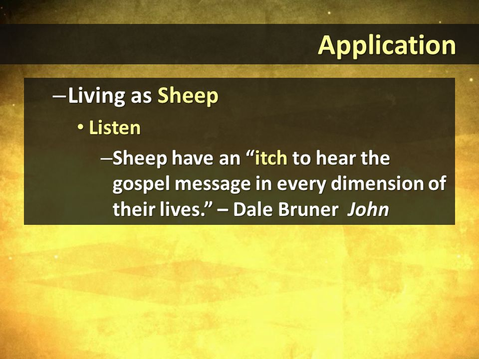 Application Application – Living as Sheep Listen Listen – Sheep have an itch to hear the gospel message in every dimension of their lives. – Dale Bruner John
