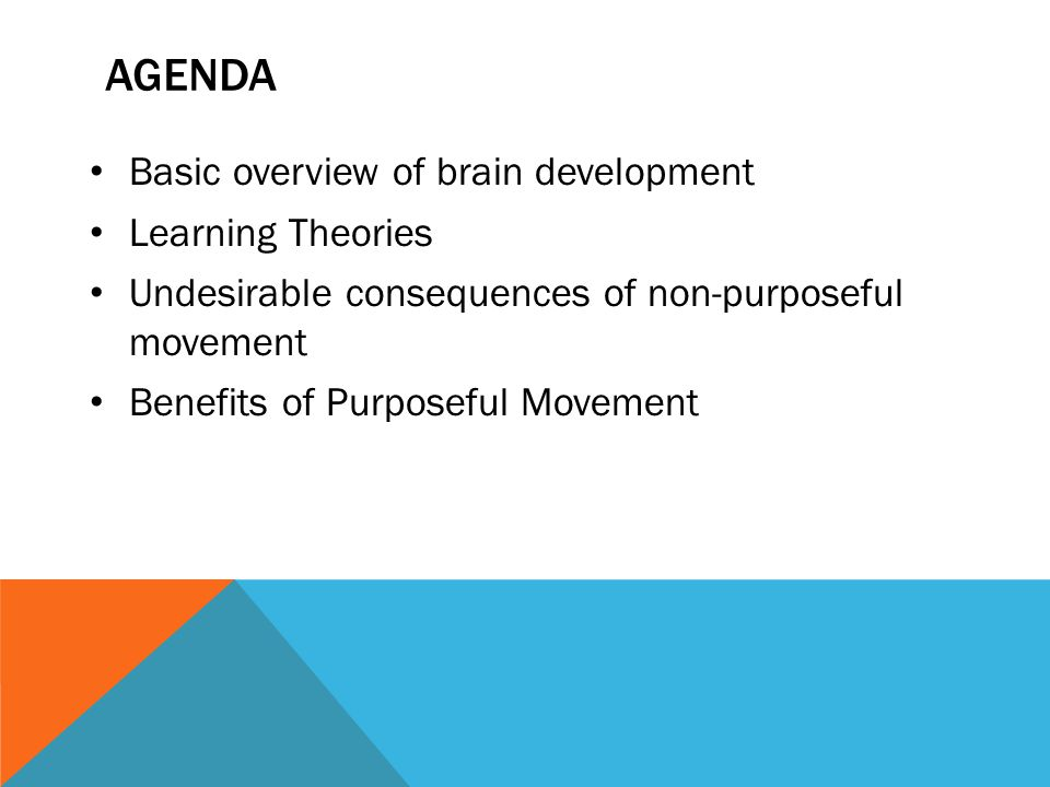 AGENDA Basic overview of brain development Learning Theories Undesirable consequences of non-purposeful movement Benefits of Purposeful Movement
