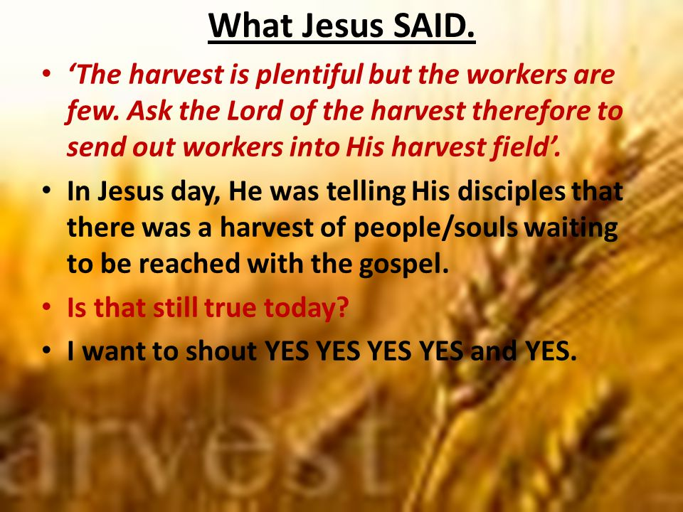 What Jesus SAID. 'The harvest is plentiful but the workers are few.