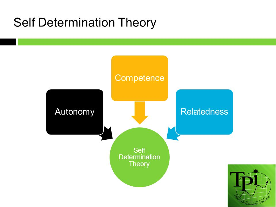 Self Determination Theory AutonomyCompetenceRelatedness