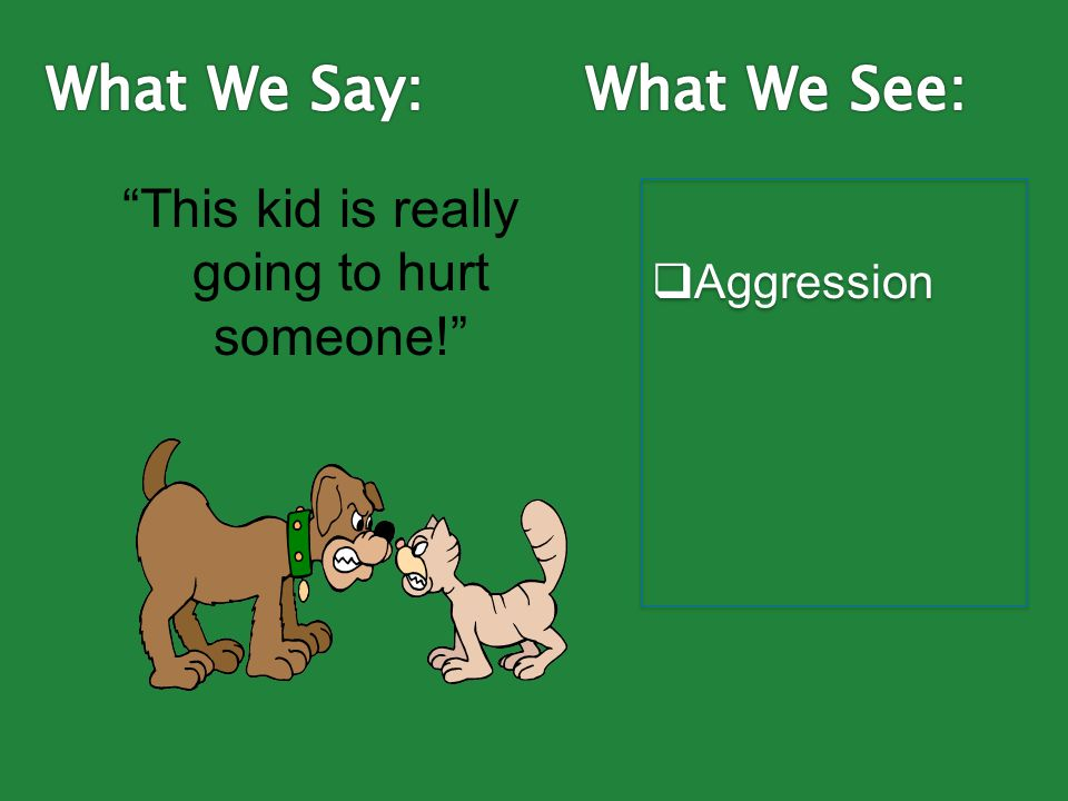 This kid is really going to hurt someone!  Aggression