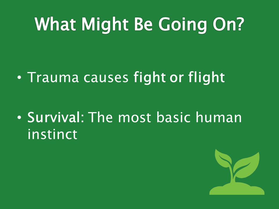 Trauma causes fight or flight Survival: The most basic human instinct