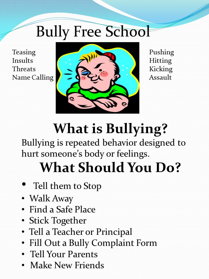 Bully Free School Teasing Insults Threats Name Calling Pushing Hitting Kicking Assault What is Bullying.