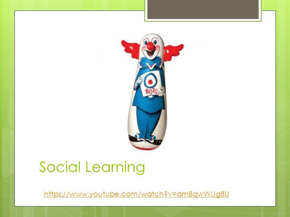 Social Learning https://www.youtube.com/watch?v=dmBqwWlJg8U