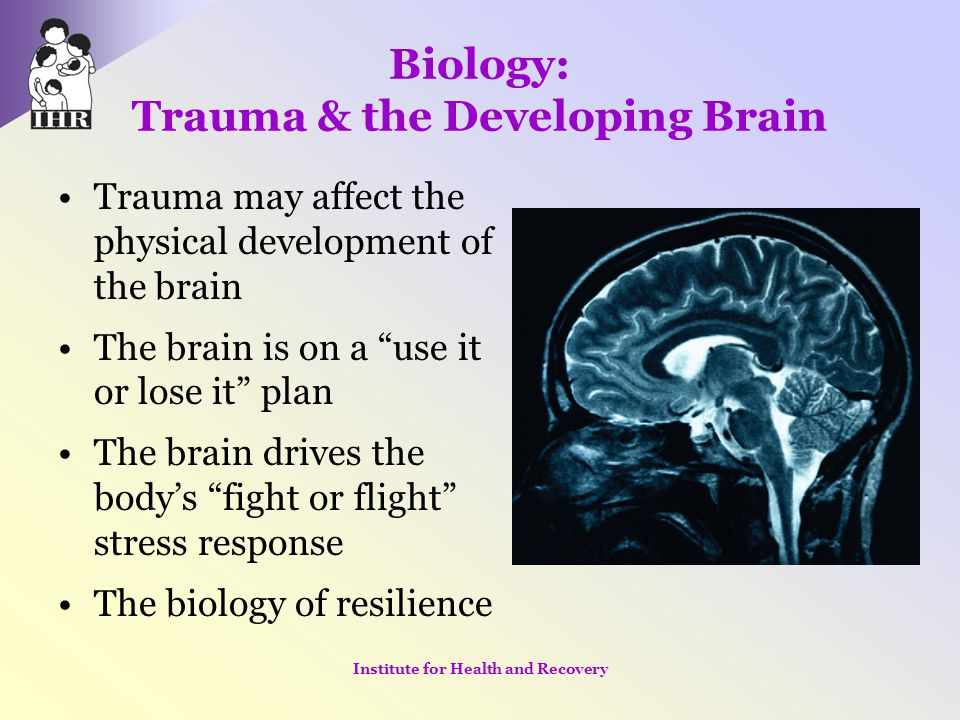 "Biology: Trauma & the Developing Brain Trauma may affect the physical development of the brain The brain is on a ""use it or lose it"" plan The brain dr"