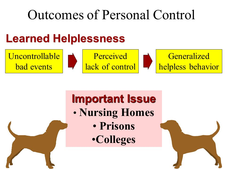 Outcomes of Personal Control Learned Helplessness Uncontrollable bad events Perceived lack of control Generalized helpless behavior Important Issue Nu