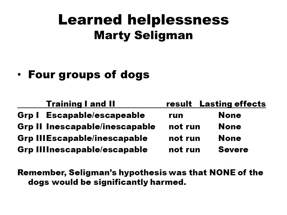 Learned helplessness Marty Seligman Four groups of dogs Training I and II result Lasting effects Grp IEscapable/escapeable runNone Grp IIInescapable/inescapable not runNone Grp IIIEscapable/inescapable not runNone Grp IIIInescapable/escapable not run Severe Remember, Seligman's hypothesis was that NONE of the dogs would be significantly harmed.