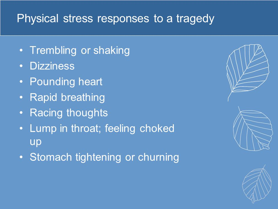Physical stress responses to a tragedy Trembling or shaking Dizziness Pounding heart Rapid breathing Racing thoughts Lump in throat; feeling choked up