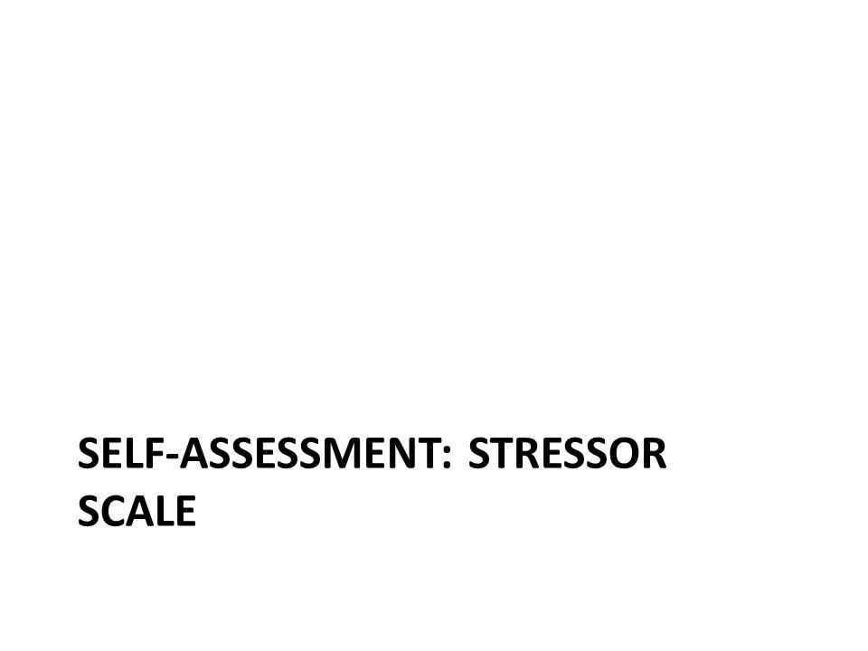 SELF-ASSESSMENT: STRESSOR SCALE