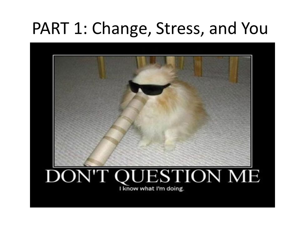 It's not just you.Change = stress. EVEN GOOD CHANGE.