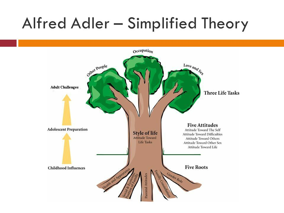 Alfred Adler – Simplified Theory