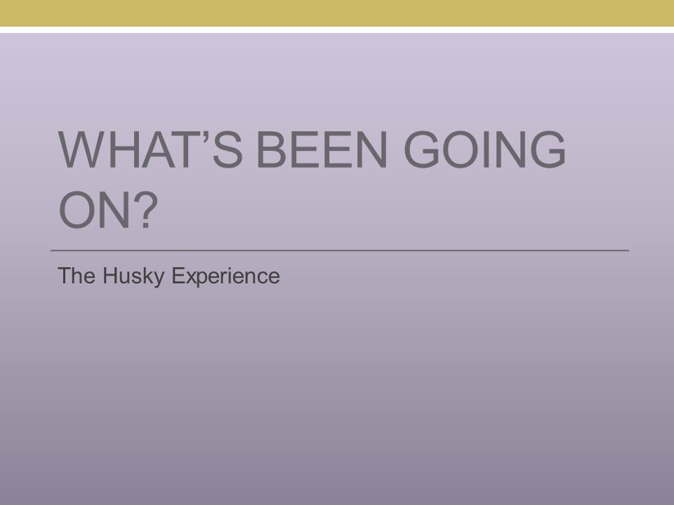 WHAT'S BEEN GOING ON? The Husky Experience