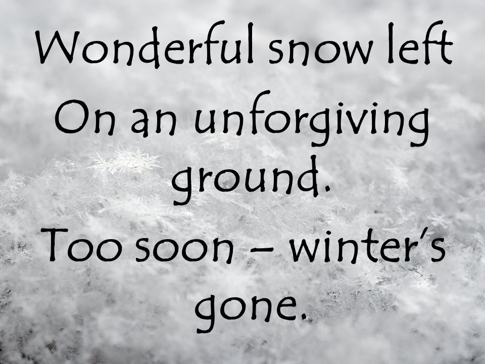 The snow fell slowly, To the wet, shivering ground.