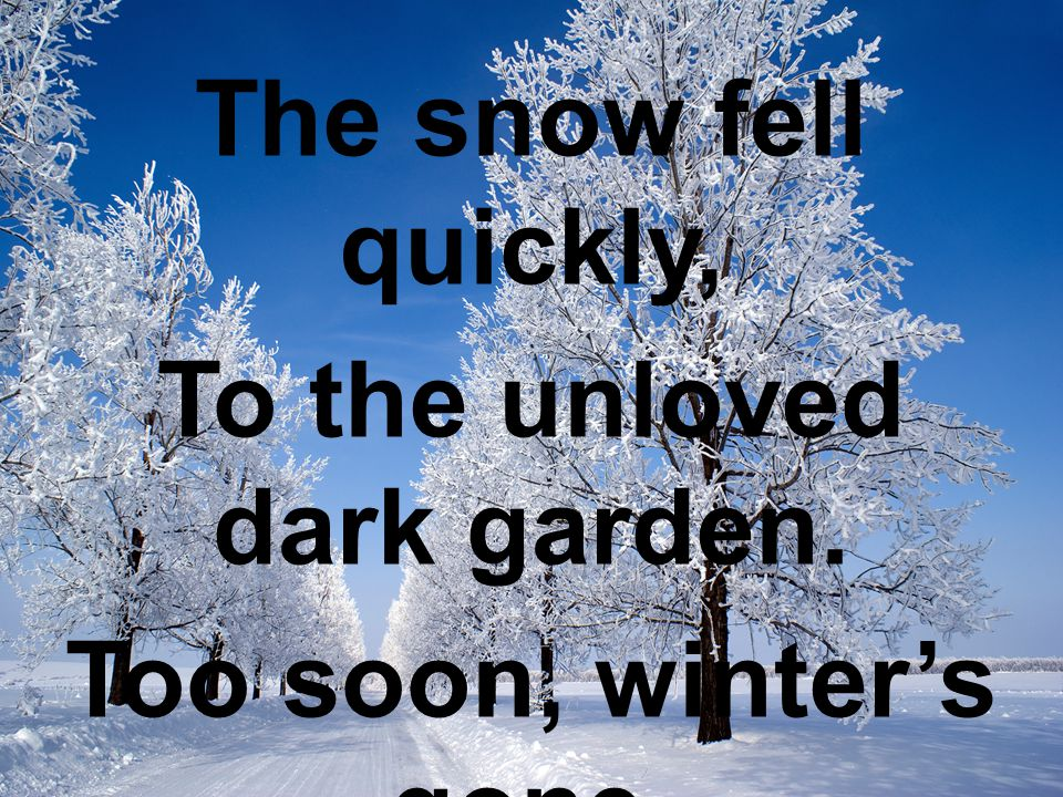 The snow fell quickly, To the unloved dark garden. Too soon, winter's gone. Charlie Schillaci