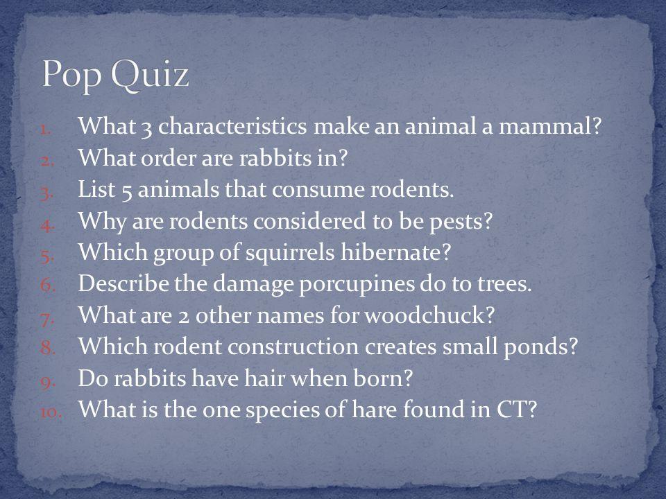 1.What 3 characteristics make an animal a mammal.