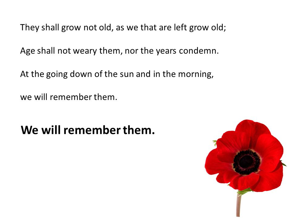 They shall grow not old, as we that are left grow old; Age shall not weary them, nor the years condemn.