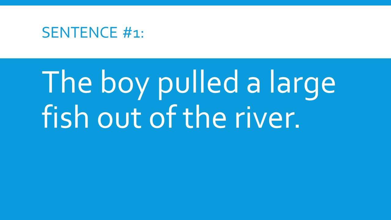 SENTENCE #1: The boy pulled a large fish out of the river.