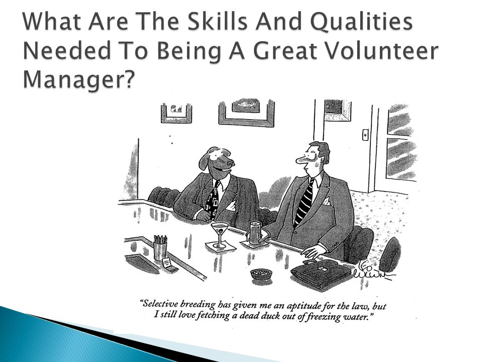  New/Uncovered Skills  Lessons learned about your skills, strengths, likes and dislikes  How you deal with others