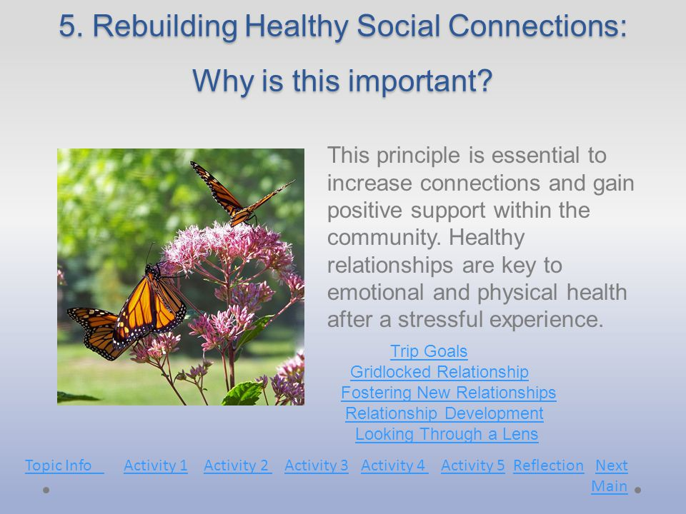 5. Rebuilding Healthy Social Connections: Why is this important.
