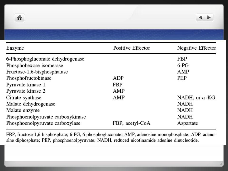 Regulación metabólica de las enzimas de la glucólisis y del ciclo de los ácidos tricarboxílicos