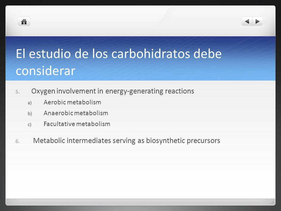 El estudio de los carbohidratos debe considerar 5. Oxygen involvement in energy-generating reactions a) Aerobic metabolism b) Anaerobic metabolism c)