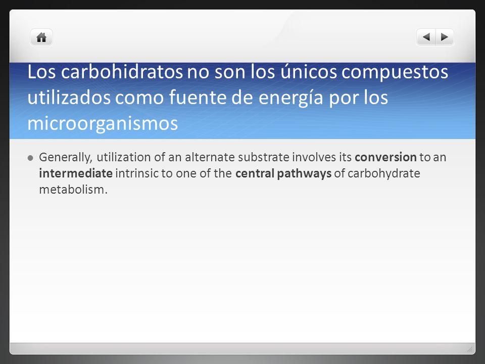 Los carbohidratos no son los únicos compuestos utilizados como fuente de energía por los microorganismos Generally, utilization of an alternate substr