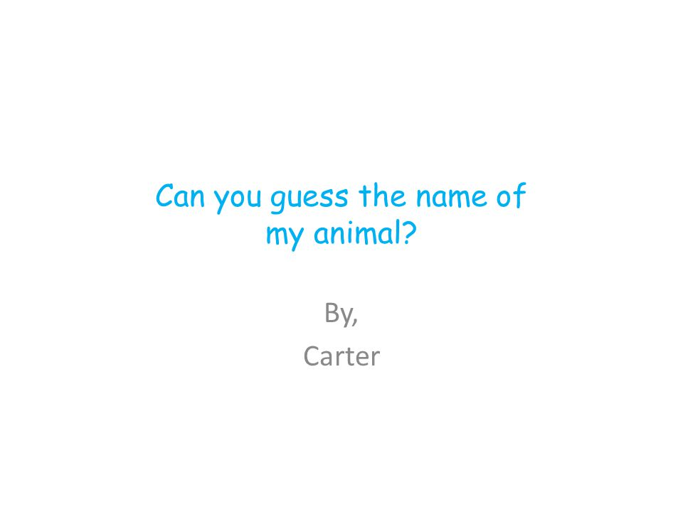 Can you guess the name of my animal By, Carter