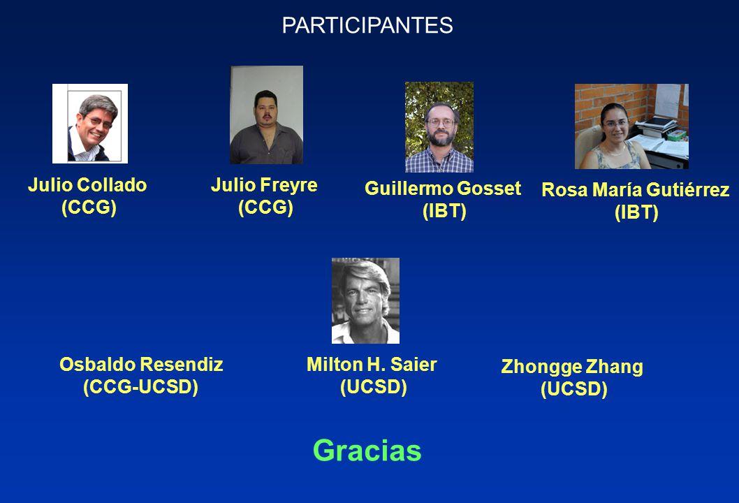 Osbaldo Resendiz (CCG-UCSD) PARTICIPANTES Julio Collado (CCG) Julio Freyre (CCG) Milton H.