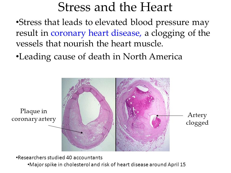 Stress and the Heart Stress that leads to elevated blood pressure may result in coronary heart disease, a clogging of the vessels that nourish the hea