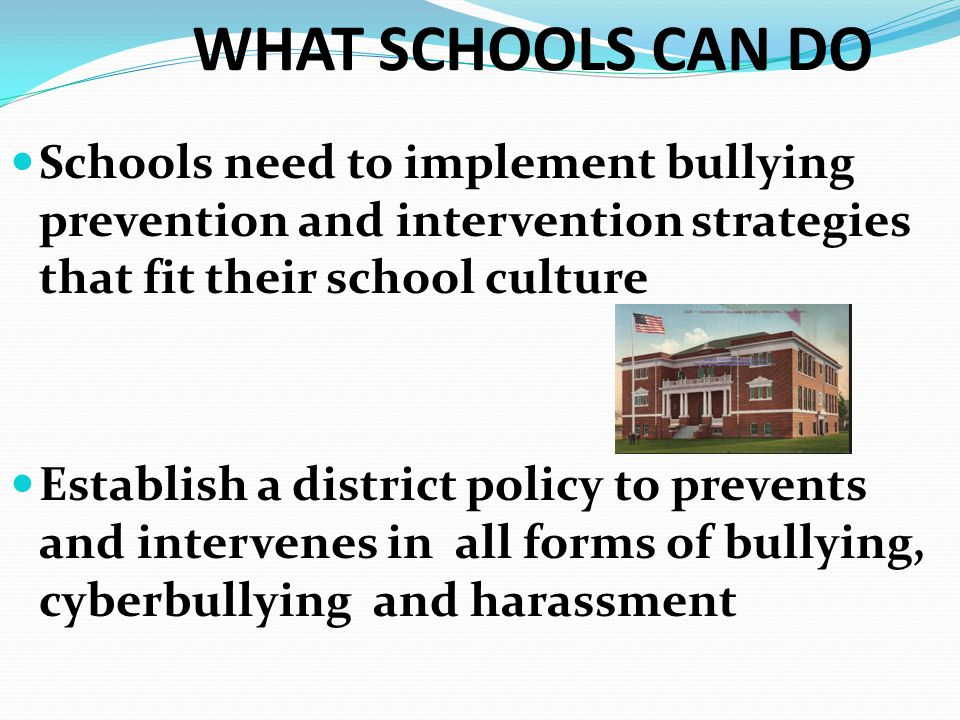 WHAT SCHOOLS CAN DO Schools need to implement bullying prevention and intervention strategies that fit their school culture Establish a district polic
