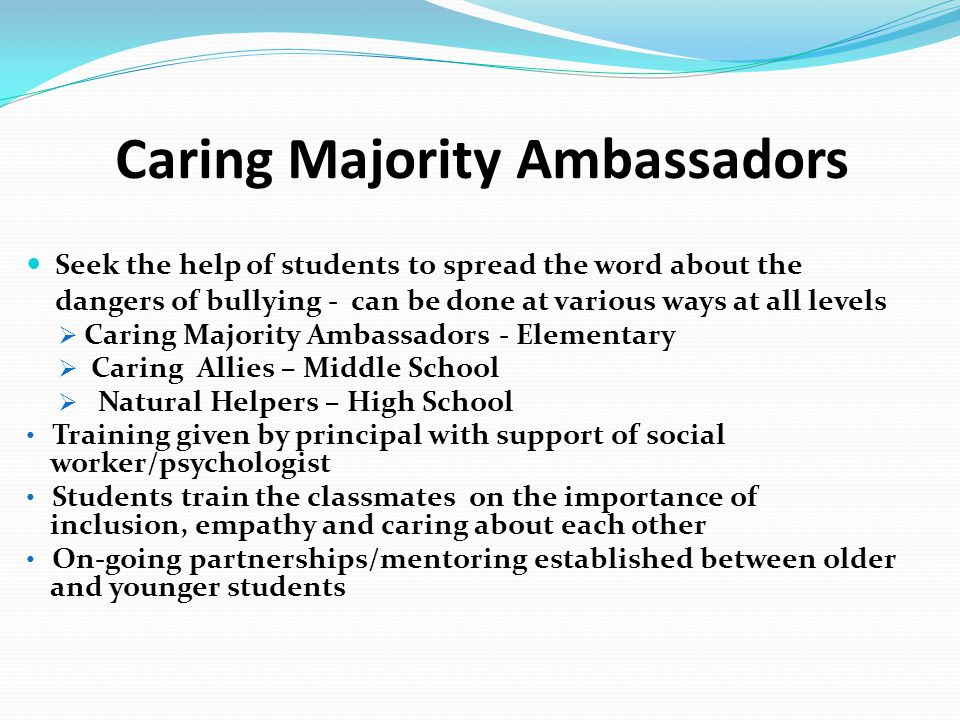 Caring Majority Ambassadors Seek the help of students to spread the word about the dangers of bullying - can be done at various ways at all levels  C