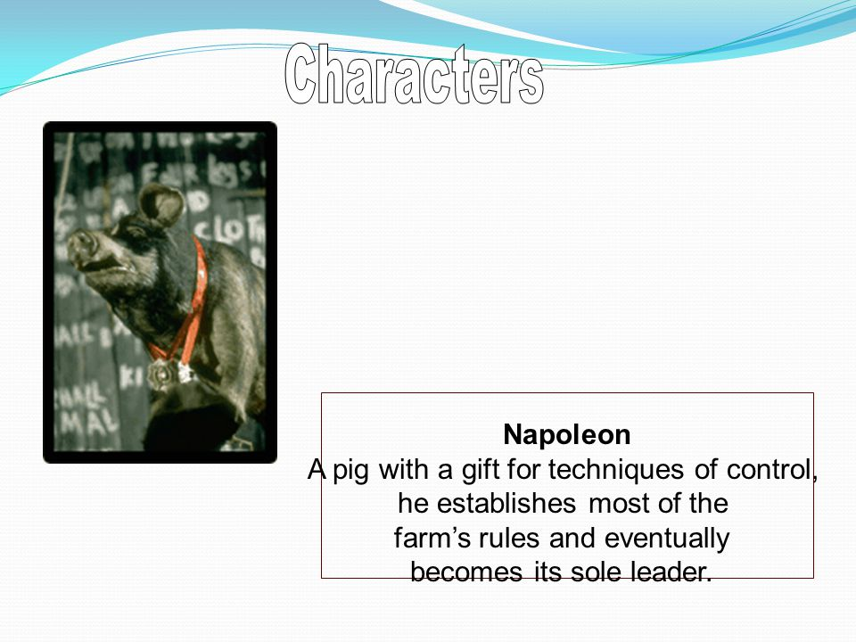 Napoleon A pig with a gift for techniques of control, he establishes most of the farm's rules and eventually becomes its sole leader.