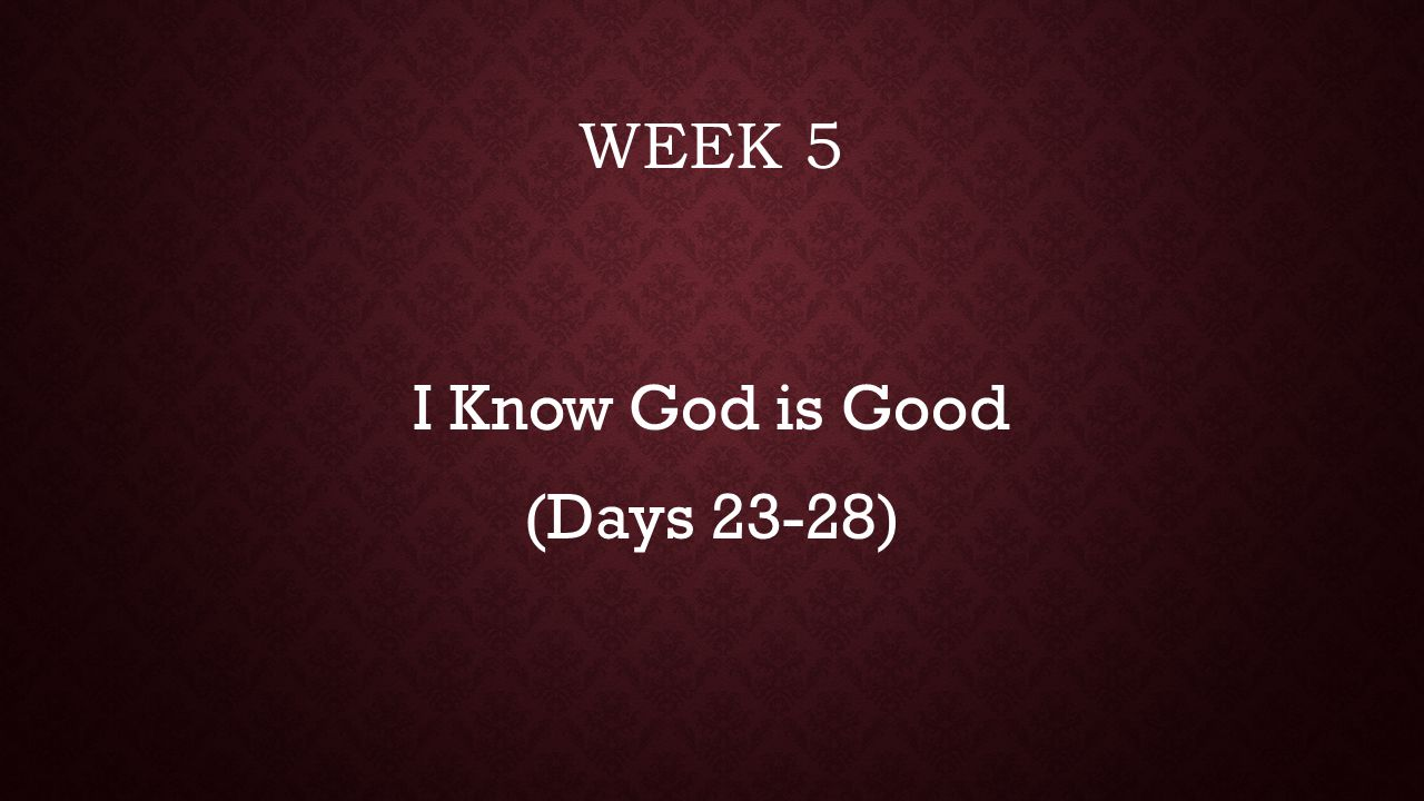 DAY 23: I TRUST IN GOD'S JUSTICE How does your sense of fairness affect your thinking about politics, faith, salvation, life in general.