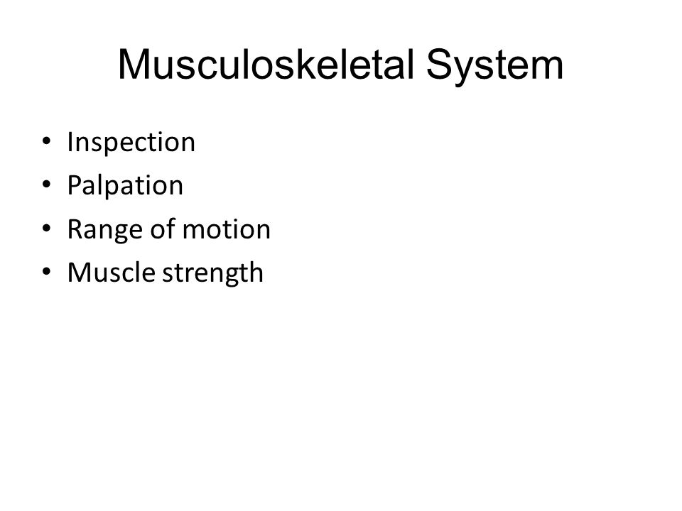 Musculoskeletal System Inspection Palpation Range of motion Muscle strength
