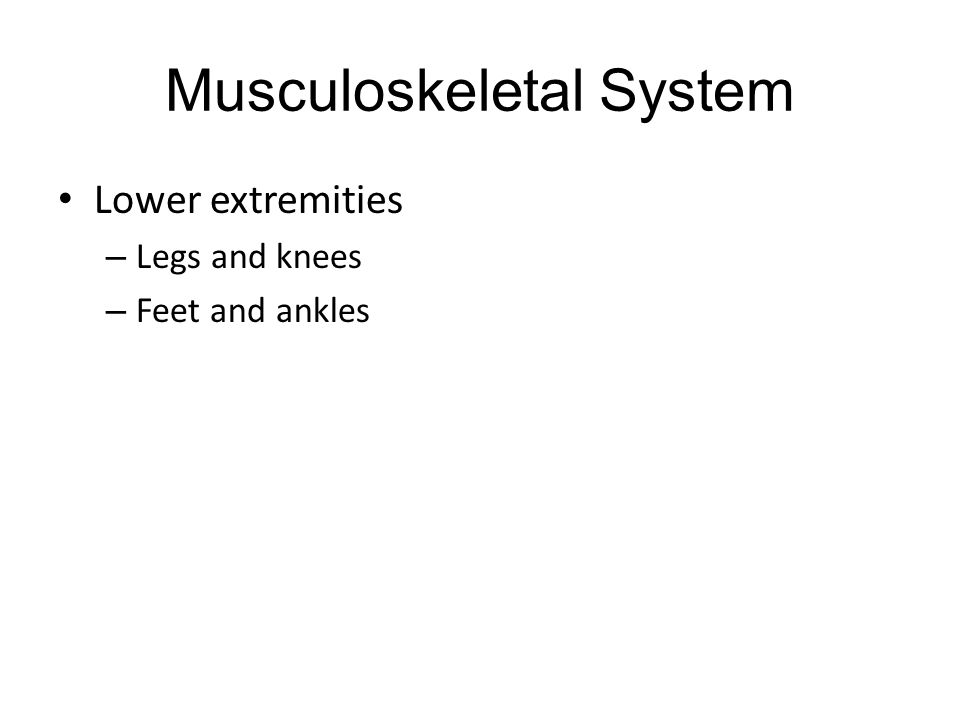Musculoskeletal System Lower extremities – Legs and knees – Feet and ankles