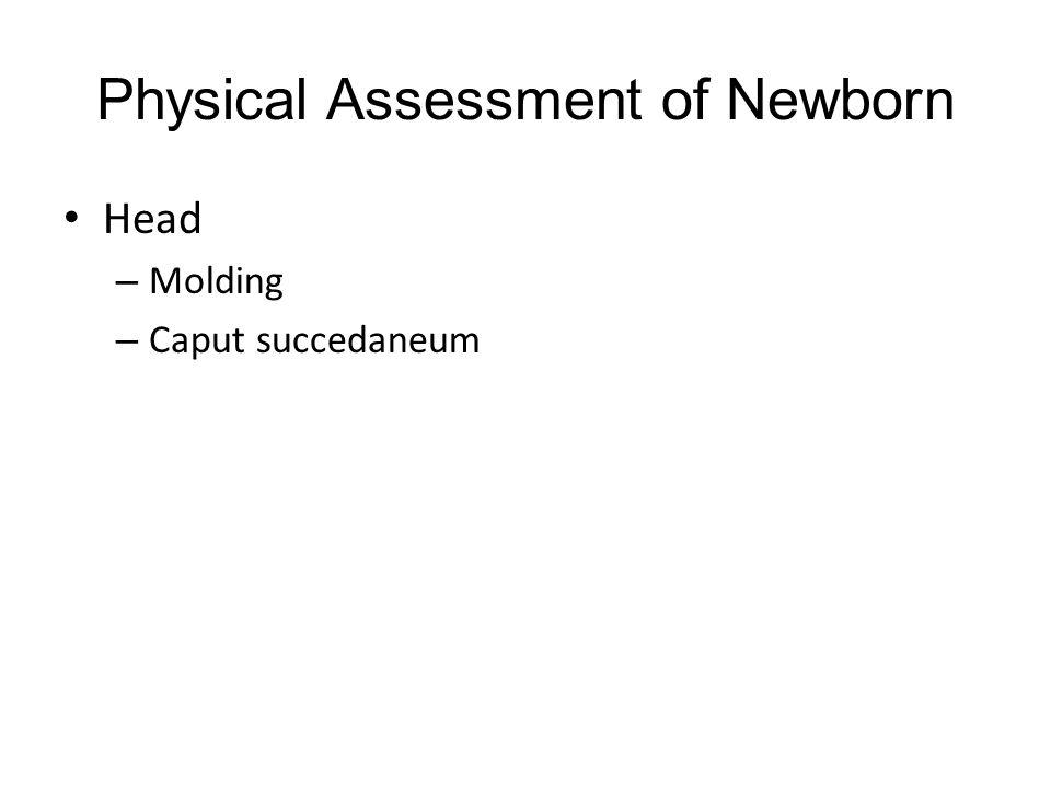 Physical Assessment of Newborn Head – Molding – Caput succedaneum
