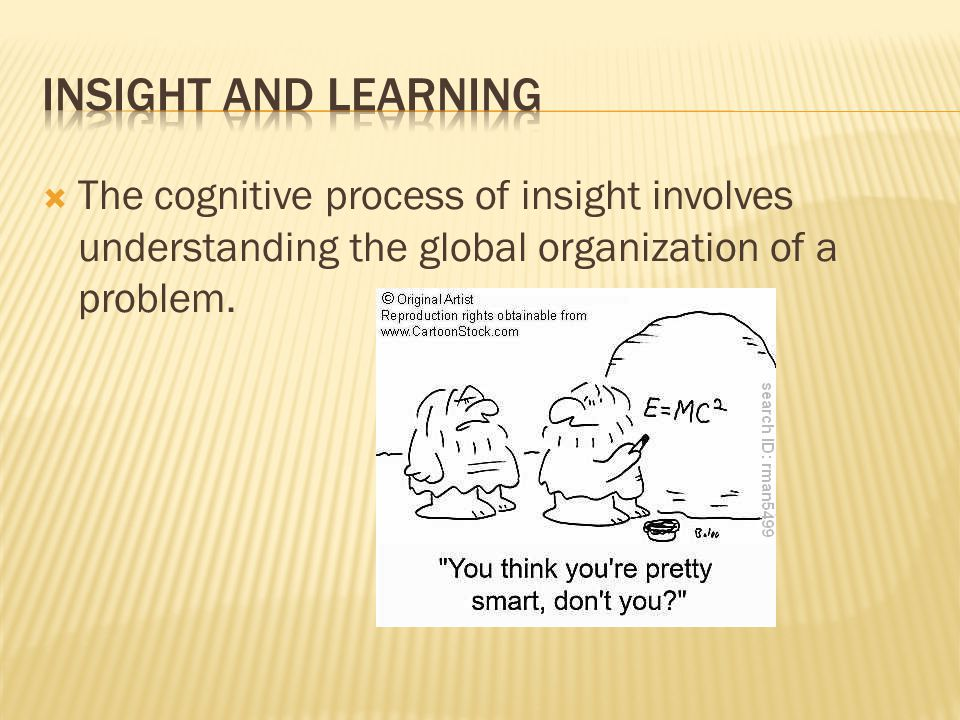  The cognitive process of insight involves understanding the global organization of a problem.