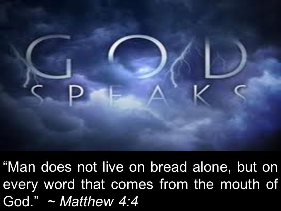 Man does not live on bread alone, but on every word that comes from the mouth of God. ~ Matthew 4:4