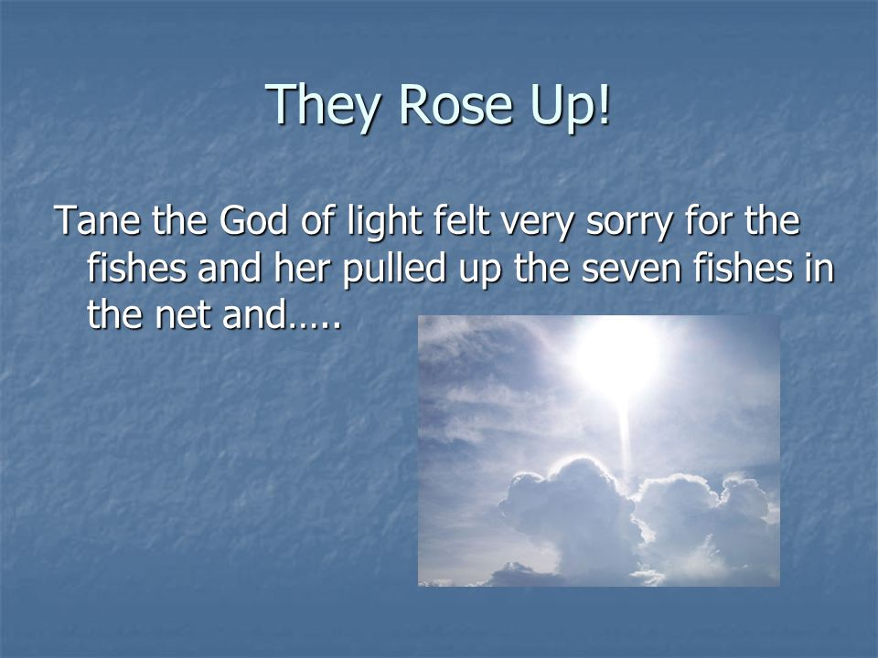 They Rose Up! Tane the God of light felt very sorry for the fishes and her pulled up the seven fishes in the net and…..