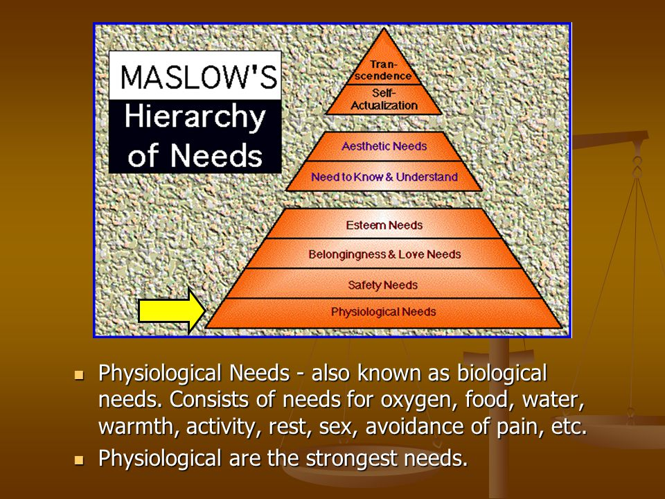 Physiological Needs - also known as biological needs. Consists of needs for oxygen, food, water, warmth, activity, rest, sex, avoidance of pain, etc.