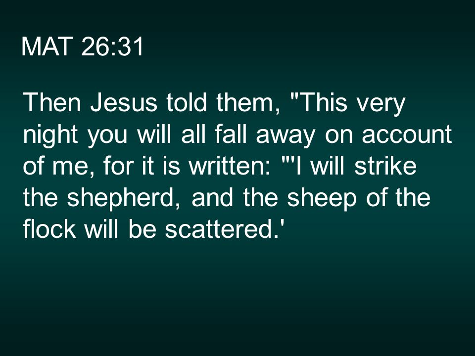 MAT 26:31 Then Jesus told them, This very night you will all fall away on account of me, for it is written: I will strike the shepherd, and the sheep of the flock will be scattered.
