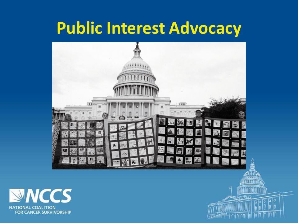 Public Interest Advocacy