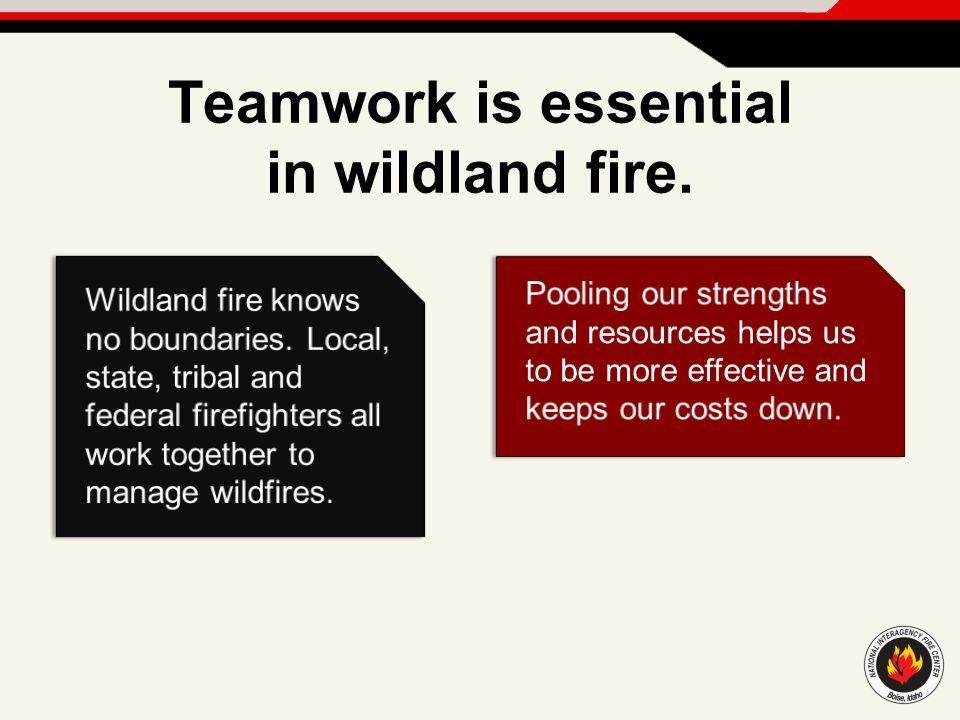 Teamwork is essential in wildland fire.