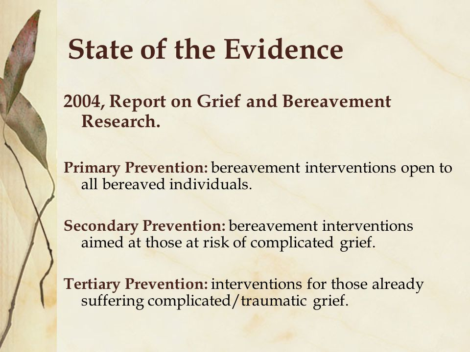 State of the Evidence 2004, Report on Grief and Bereavement Research.
