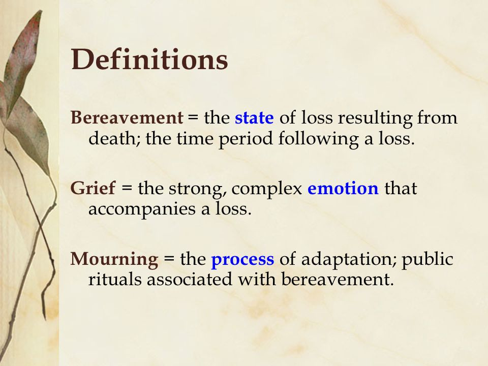 Definitions Bereavement = the state of loss resulting from death; the time period following a loss.