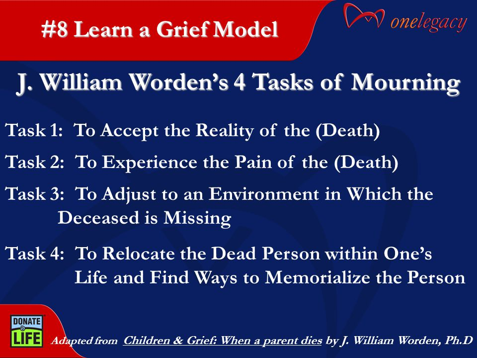 #8 Learn a Grief Model Adapted from Children & Grief: When a parent dies by J.