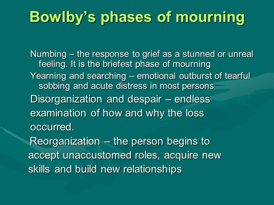 Bowlby's phases of mourning Numbing – the response to grief as a stunned or unreal feeling. It is the briefest phase of mourning Yearning and searchin