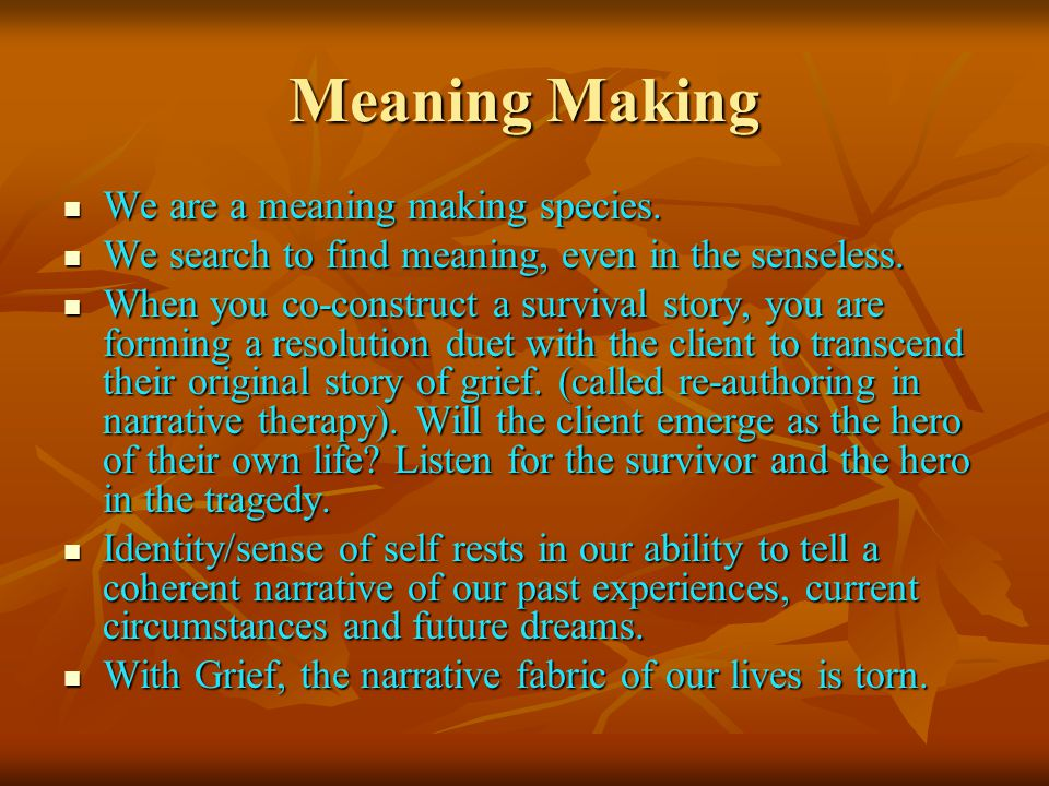 Meaning Making We are a meaning making species.We are a meaning making species.