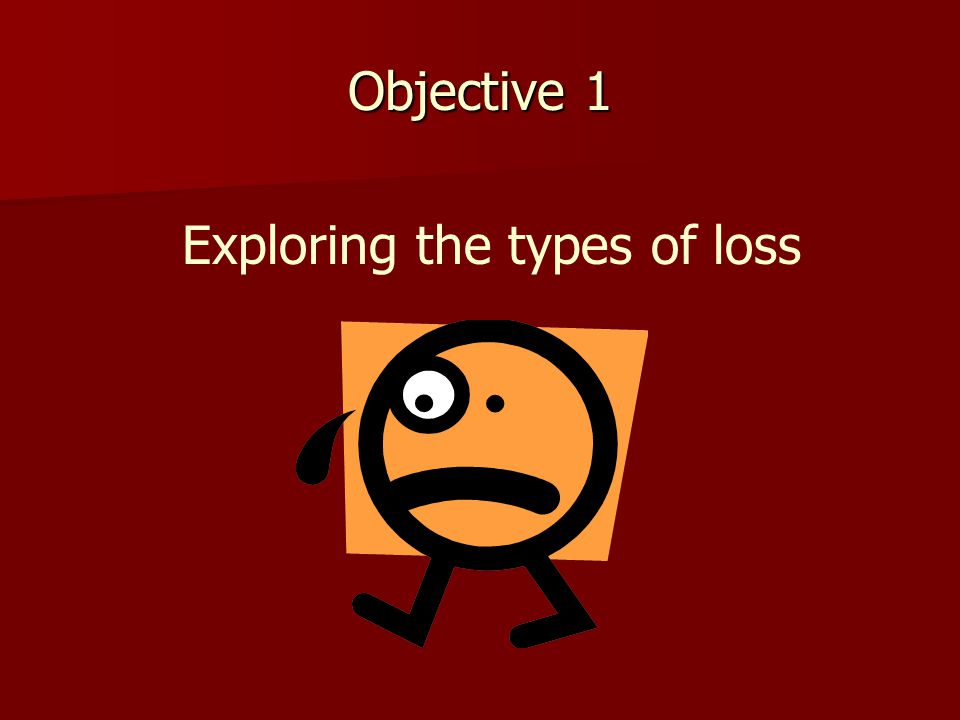 Objective 1 Exploring the types of loss