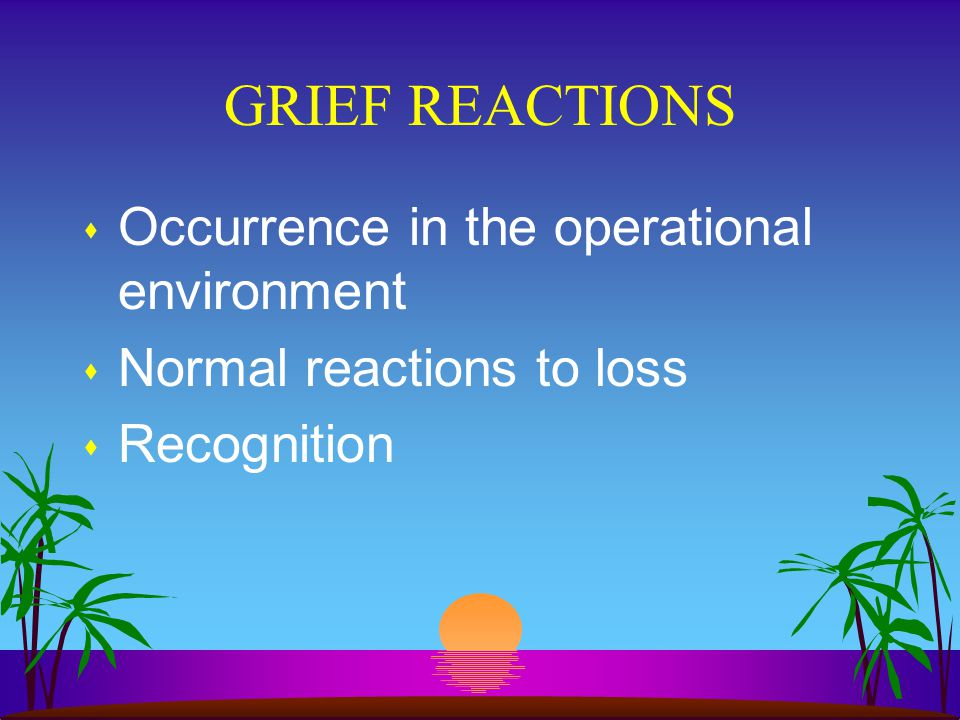 GRIEF REACTIONS s Occurrence in the operational environment s Normal reactions to loss s Recognition